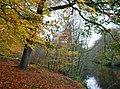 The Kellswater at the Shank Bridge (2) - geograph.org.uk - 611607.jpg