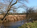 The Lugg river, Lugg Flats, Hereford - geograph.org.uk - 948308.jpg