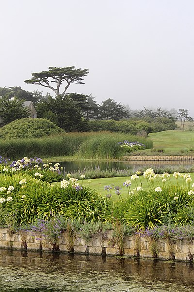 File:The Ritz-Carlton, Half Moon Bay, CA USA - panoramio (5).jpg