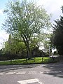The cross roads - geograph.org.uk - 807303.jpg