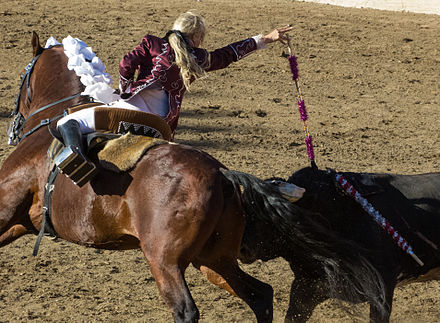 Bullfighting - Wikiwand