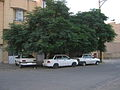 Three car parked under tree - Qavvami ave - Nishapur.JPG