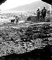 Tiberias. matpc.08985. 1898-1946.jpg