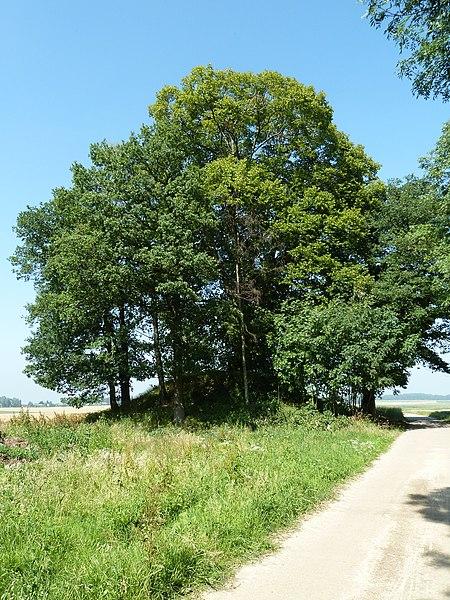 Tumulus de Ramelot, Tinlot, Belgique