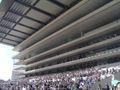 Tokyo Racecourse 7.jpg