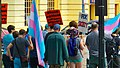 Trans Solidarity Rally and March 55449 (17793370862).jpg