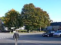 Tree-lined village square in Inistioge - geograph.org.uk - 1539697.jpg