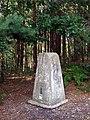 Triangulation pillar on Blackwater Hill, Town Common - geograph.org.uk - 510730.jpg
