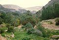 Tripoli - panoramio - sasikan (5).jpg