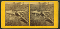 Trout Farm, Meridith, N.H, from Robert N. Dennis collection of stereoscopic views 2.png