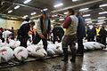 Tsukiji-Fish market.jpg