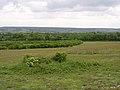 Tumuli on Stockbridge Down, Hampshire - geograph.org.uk - 24343.jpg
