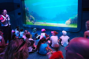 Turtle Talk with Crush - Image: Turtle Talk with Crush, Epcot