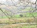 Ty Fferm Hafod Rhisgl Farmhouse - geograph.org.uk - 395221.jpg