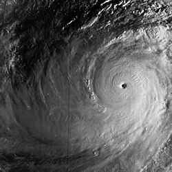 Typhoon Tip (1979) peak intensity.jpg