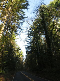 Priest Point Park public park in Olympia, Washington, USA
