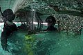 US Navy 100206-N-1134L-042 Divers drill guide holes into a damaged section of a pier at the port in Port-au-Prince, Haiti.jpg