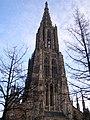 Ulm katedra 12.jpg