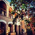 University of Aruba.jpg