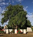 UpperHeyford Keele Stack Yeo CWGC tree.jpg