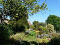 Urval Bourlie sud-est jardin.JPG