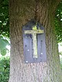 Val-Meer-Kwartjesboom (6).jpg