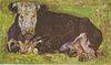 Van Gogh - Liegende Kuh2.jpeg
