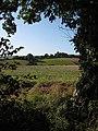 View across the Llanerch Brook valley - geograph.org.uk - 998369.jpg