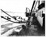 View from aboard the Steamship Steamer CORWIN off of Nome showing dogsled teams on ice hauling freight from ship, 1907 (NOWELL 153).jpeg