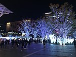 View in front of Hakata Station at night 20181112-1.jpg