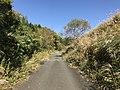 View near Aso Farm Land 6.jpg