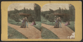 View of people enjoying the park, (rustic bridge in the distance, from Robert N. Dennis collection of stereoscopic views.png
