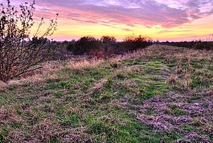 Stanground North - Image: View towards Peterborough geograph.org.uk 603069