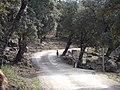Villaluenga-Cabra2005132.jpg