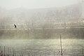 Volando sobre el Ebro (8166338617).jpg