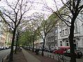 Volksgartenstraße - panoramio.jpg