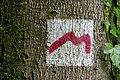 Waldbillig (LU), Tal der Schwarzen Ernz -- 2015 -- 4499.jpg