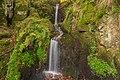 Waldkirch - Altersbacher Wasserfall.jpg