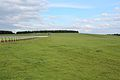 Warren Hill, Newmarket, UK.jpg