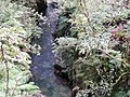 Whaiti-Nui-A-Toi canyon.jpg