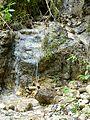 WikiProjekt Landstreicher Geotop Eistobel 12.jpg
