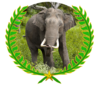 Wikiexpanction elephant.png