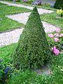 Wilanów - pałacowe ogrody - 16.jpg