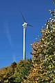 Windkraftanlage Grüner Heiner.jpg