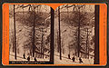 Winter at Horse-shoe Bend, on the Penna. R. R, by R. A. Bonine 3.jpg