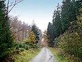 Wistinghauserstr2.jpg