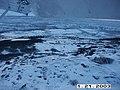 Wolf radio tracking, Denali, 20032003 (0ab27567-7a0a-4c95-ac08-43b2d5ae0ff3).jpg