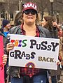 Women's March Washington, DC USA 34 (cropped).jpg