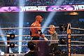 WrestleMania XXX IMG 4069 (13768194463).jpg