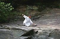 Taijiquan in den Wudangbergen (Wudang tai chi ...
